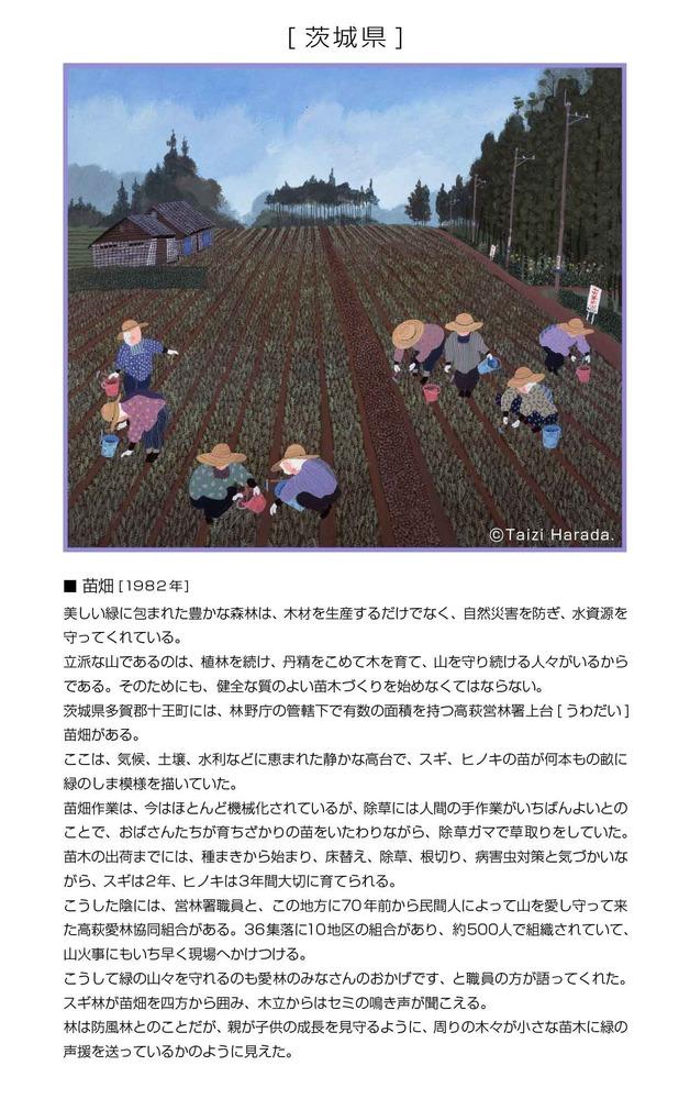 9_茨城県_苗畑.jpg